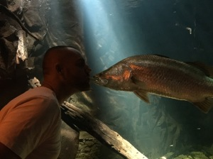 Kissing the barramundi
